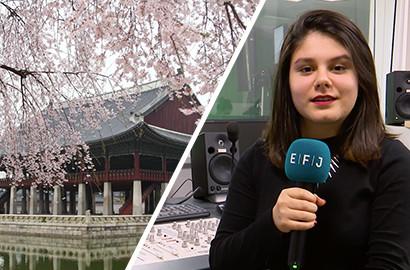 Actu EFJ - Études de journalisme à l'international : Expérience en Corée du Sud